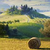 Fototapety campagna Toscana, Italia