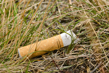 cigarette thoughtlessness in dry grass