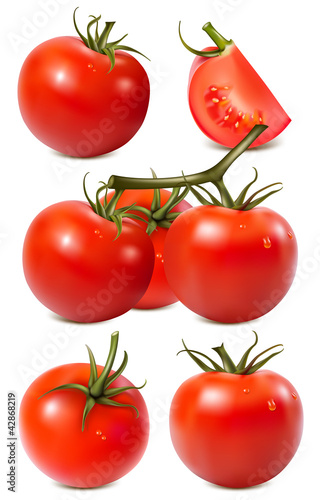 Vector collection of red ripe tomatoes with water drops.