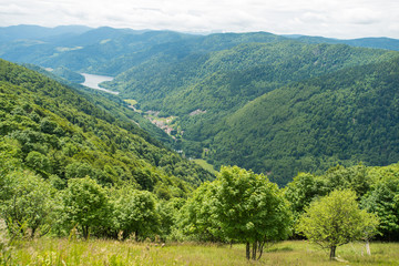 The lower mountains of Vosges