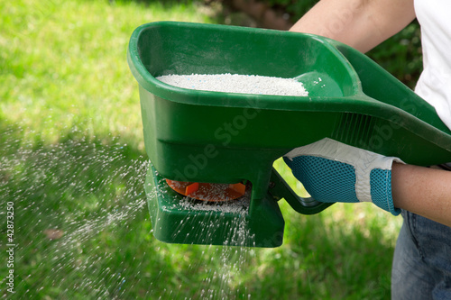 Fertilizing Lawn - 42873250