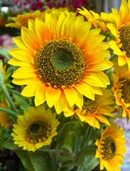 plastic sunflower