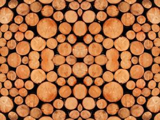 Panaveggio, tronchi di abete