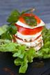Tomate Mozzarella #4