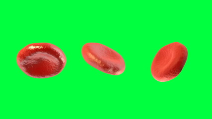 Digital 3D Blood Cells Against Green Screen