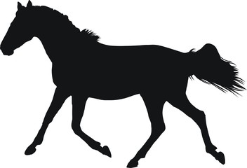 pictogramme cheval