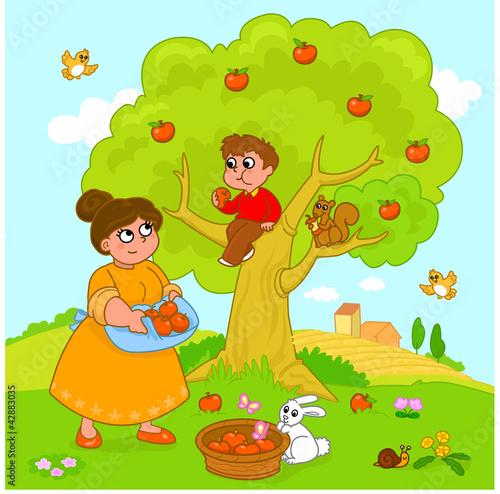 Bambino e mamma raccolgono le mele. Vettore.