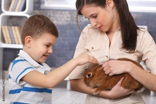 Little boy caressing pet rabbit handheld by mum