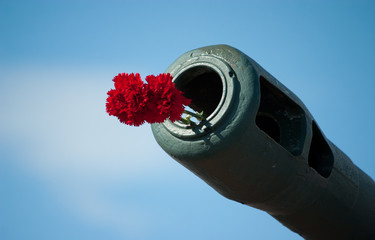 red flowers in tank muzzle