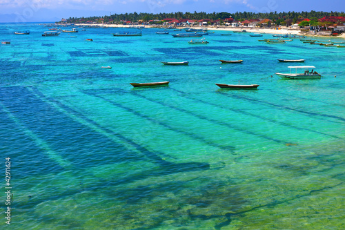 Foto op Plexiglas Indonesië Nusa lembongan seaweed farming