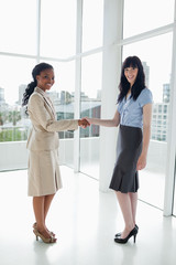 Young businesswomen shaking hands while smiling friendly