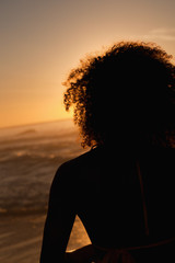 Rear view of a young attractive woman standing on the beach at sunset