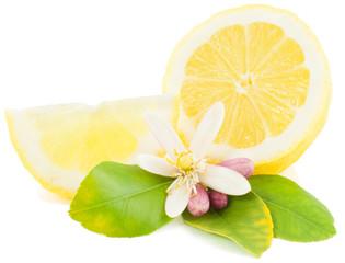 Lemon and  flower