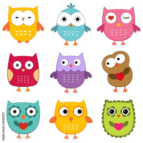 Owls set - 42925071