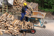 Sägen von Feuerholz