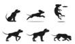 hound dog set