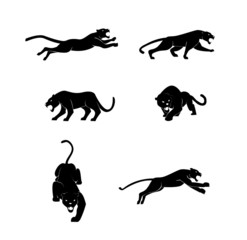 Panther set