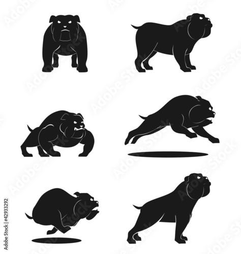 Bull Dog Set
