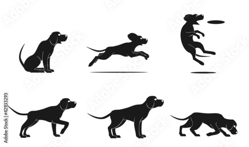 hound dog set