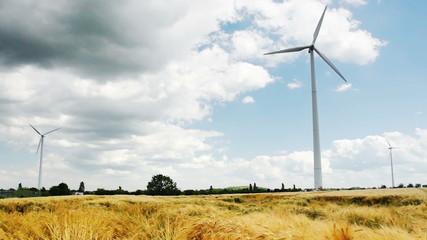 Windenergy on a Cerial Field