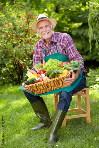 Senior gardener with a basket of various vegetables