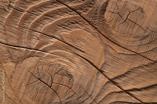 texture - fond bois teinté