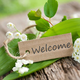 Welcome - 42937431