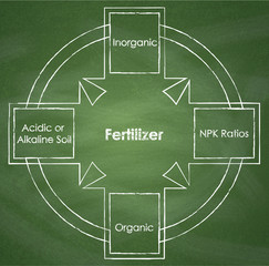 Types of fertilizer. Diagram on chalkboard background