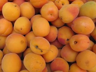 Albaricoques en el mercado. Apricots.
