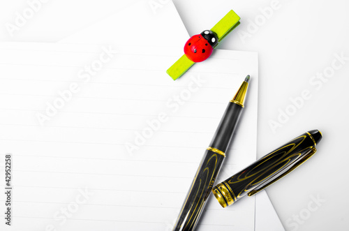 ladybug spin and pen