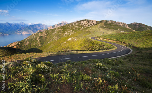 Road - Corsica - 42952622