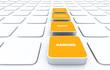3D Pads Orange - Keywords Design Content Ranking 4