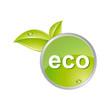 Eco glossy icon