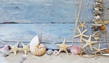 Fond maritime: Pêche, de coquillages et étoiles de mer