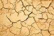 dry season with cracked ground - 42960494