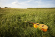 Wooden guitar lying in grassy field