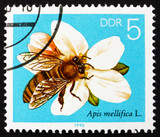 Postage stamp GDR 1990 Apple Blossom, Bees Collecting Nectar