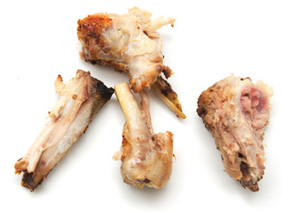 gnawed bones from chicken