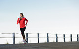 Running panorama fitness
