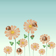 Daisies and ladybirds, colorful background