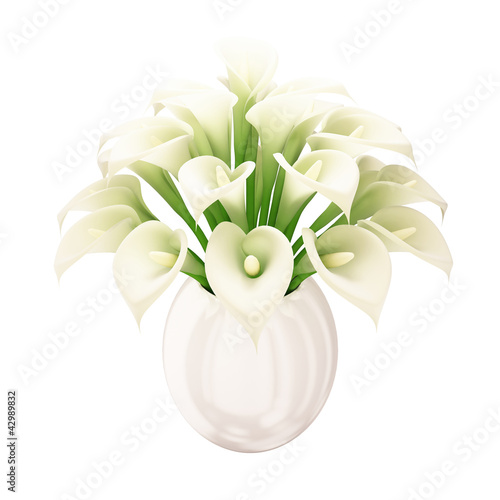 White Calla Bouquet - white background