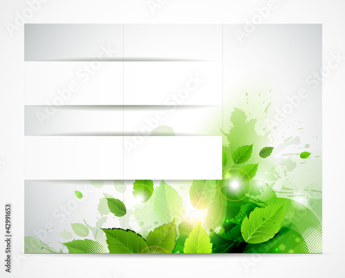 eco brochure with branch of fresh green leaves