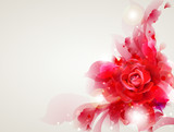Fototapety Abstract soft background with red rose