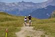 excursionistas alpes