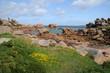Brittany, pink granit rocks in Ploumanac h