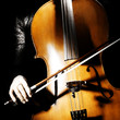 Cello musical instrument cellist