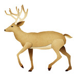 Papercut Deer Recycled Paper poster