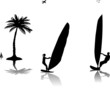 Silhouettes of woman and man windsurfers near the palm tree