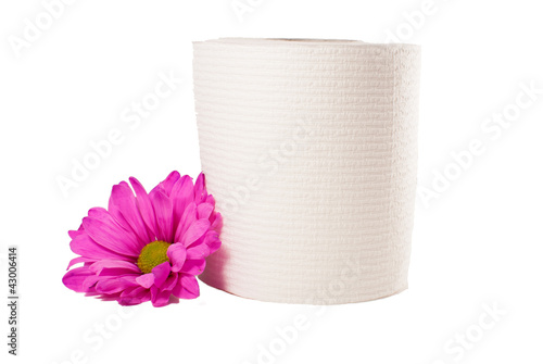 Toilet Paper with Pink Daisy