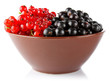 red and black currant in clay tureen